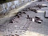20110320_東日本大震災_幕張新都心_歩道_NTT回線_1228_DSC08252