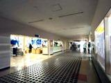 20110416_浦安市舞浜_東京ディズニーリゾート_節電_030