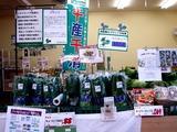 20110424_船橋市行田3_農産物直売所_JAちば東葛_1324_DSC08827