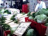 20110604_船橋中央卸売市場_ふなばし楽市_0900_DSC02826