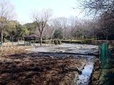 20110313_東日本大震災_海浜香澄公園_菖蒲園_1203_DSC09704
