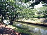 20110604_第26回船橋海老川親水市民まつり_0931_DSC02919