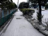 20110402_東日本大震災_船橋三番瀬海浜公園_閉鎖_1033_DSC00124