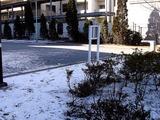 20110116_船橋市_積雪_雪化粧_寒気_冬型_1017_DSC02422T