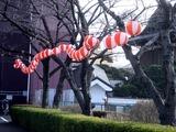 20110312_三井ガーデンホテルららぽーと_ちょうちん_1608_DSC08774
