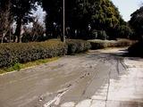 20110313_東日本大震災_海浜香澄公園_液状化_1158_DSC09658