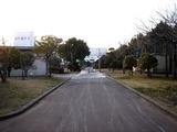 20110312_東日本巨大地震_若松公園_液状化_1652_DSC09034