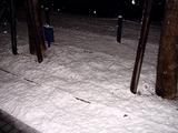 20110214_ららぽーとTOKYO-BAY_大雪_2249_DSC06387