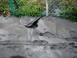 20110312_東日本巨大地震_船橋市若松_水道断水_1631_DSC08920