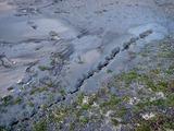 20110312_東日本巨大地震_若松公園_液状化_1655_DSC09059
