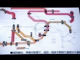 20110322_JR東日本_鉄道運休_電子掲示板_0838_DSC08494