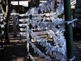 20110109_船橋市三山5_二宮神社_初詣_1252_DSC01109