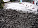20110402_東日本大震災_船橋三番瀬海浜公園_閉鎖_1032_DSC00113