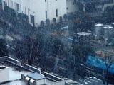 20110307_首都圏_関東地方_大雪_1015_DSC08154