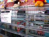 20110313_東日本大震災_コンビニ_セブンイレブン_1100_DSC09366