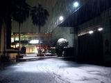20110214_ららぽーとTOKYO-BAY_大雪_2243_DSC06362