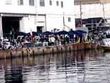 20110129_船橋漁港_農水産物生産者直売_朝市_0954_DSC03791