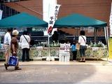 20110430_ららぽーとTOKYO-BAY_産地応援野菜即売会_1305_DSC08694