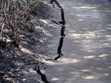 20110313_東日本大震災_海浜香澄公園_地割れ_1200_DSC09677