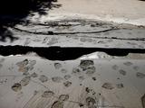 20110313_東日本大震災_海浜香澄公園_地割れ_1204_DSC09706
