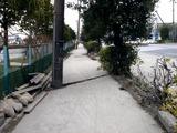 20110402_東日本大震災_船橋三番瀬海浜公園_閉鎖_1033_DSC00122