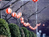 20110312_三井ガーデンホテルららぽーと_ちょうちん_1608_DSC08773