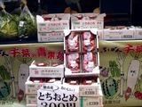 20110430_ららぽーとTOKYO-BAY_産地応援野菜即売会_1303_DSC08675