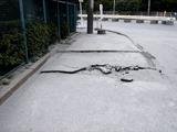 20110402_東日本大震災_船橋三番瀬海浜公園_閉鎖_1034_DSC00132