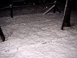 20110214_ららぽーとTOKYO-BAY_大雪_2249_DSC06388