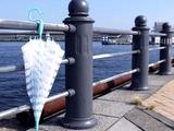 20110529_エバーイオン_ビニール傘_カサ_040