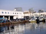 20110129_船橋漁港_農水産物生産者直売_朝市_0954_DSC03789