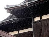 20110211_船橋市浜町_ららぽーとTOKYO-BAY_雪_0951_DSC05690