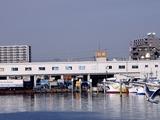 20110129_船橋漁港_農水産物生産者直売_朝市_0943_DSC03741