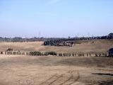 20110109_陸上自衛隊_習志野演習場_降下訓練始め_1153_DSC00841