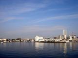 20110129_船橋漁港_農水産物生産者直売_朝市_0946_DSC03754