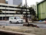 20110320_東日本大震災_幕張新都心_地震被害_1237_DSC08281T