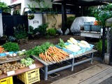 20110619_船橋市海神6_農産物直売所_野菜販売_1205_DSC05775