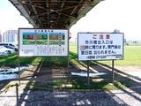 20110604_東京江戸川区小岩菖蒲園_ショウブ_1229_DSC03594