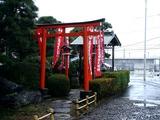 20110211_ららぽーとTOKYO-BAY_ウメ_梅_0952_DSC05695