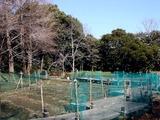 20110313_東日本大震災_海浜香澄公園_菖蒲園_1203_DSC09701