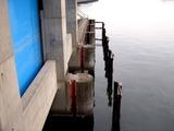 20110402_船橋市船橋西浦_東日本大震災_西浦水門_1016_DSC00040