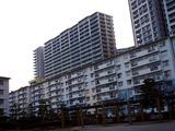 20110312_東日本大震災_若松団地_液状化_1711_DSC09167