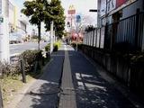 20110316_東日本大震災_船橋競馬場前_道路歪み_1047_DSC06815
