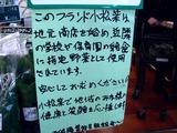 20101128_船橋市行田3_農産物直売所_JAちば東葛_1008_DSC04222