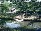 20110604_第26回船橋海老川親水市民まつり_0931_DSC02922