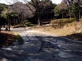 20110313_東日本大震災_海浜香澄公園_液状化_1158_DSC09661