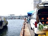 20110521_東日本大震災_船橋漁港の朝市_農産物_水産物_0955_DSC01902