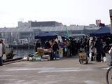 20110129_船橋漁港_農水産物生産者直売_朝市_1003_DSC03838