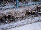 20110317_東日本大震災_浦安_東京ディズニーリゾート_1459_DSC07210