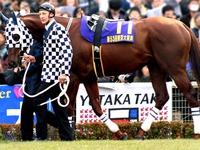 20110923_船橋競馬場_フリオーソ号_出走取消し_012